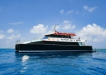 Photos of Dreamtime Dive & Snorkel by Reef Magic Cruises
