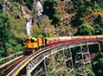 Photos of Tropic Wings - Kuranda Experiences